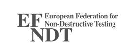 efndt grey client logo